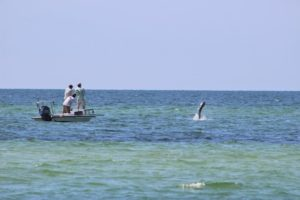 a wide shot of a fishing boat catching a tarpon in oyster bay