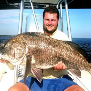 an angler in Panacea holding a black drum